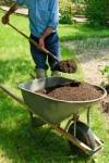 Gärtner suchen