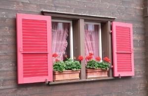 Fenster-Angebote einholen