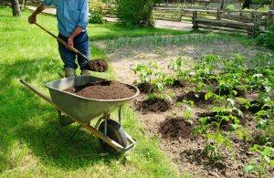 Gartenbau-Angebote einholen